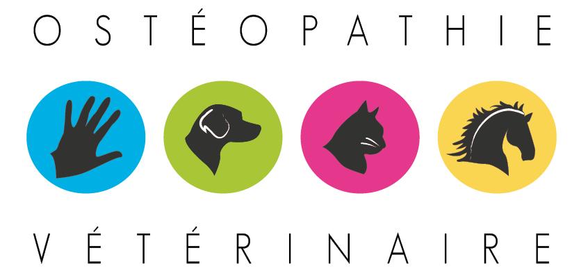 L'osthéopathie vétérinaire à Lyon